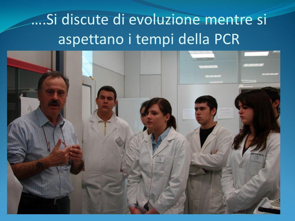 ….Si discute di evoluzione mentre si aspettano i tempi della PCR