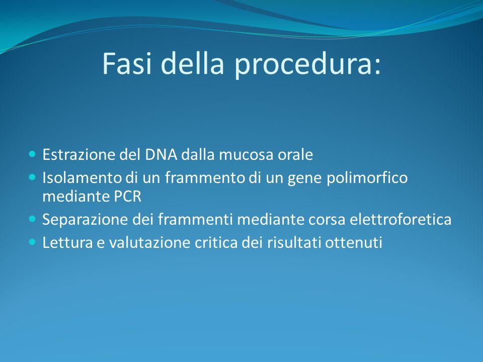 Fasi della procedura: Estrazione del DNA dalla mucosa orale