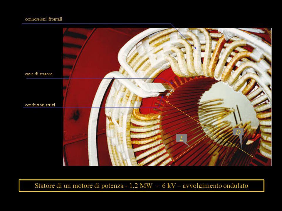 L D. conduttori attivi. cave di statore. connessioni frontali.