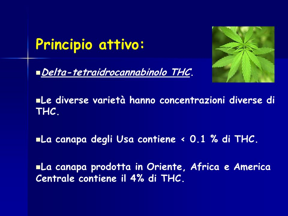 Principio attivo: Delta-tetraidrocannabinolo THC.