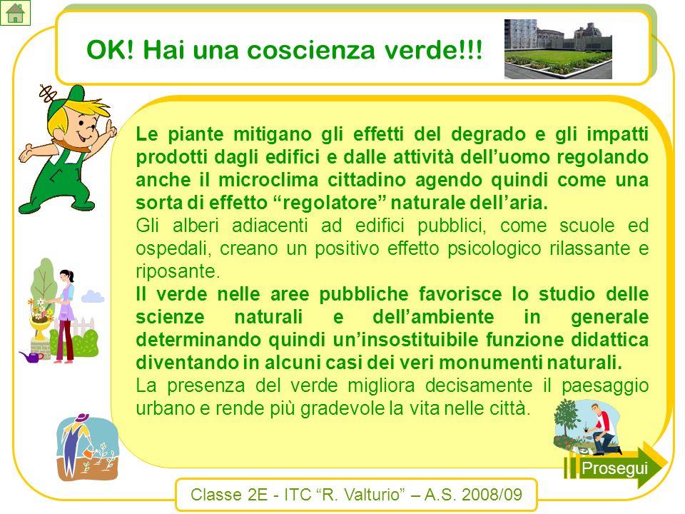 OK! Hai una coscienza verde!!!