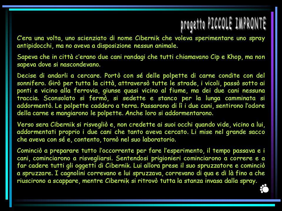 progetto PICCOLE IMPRONTE