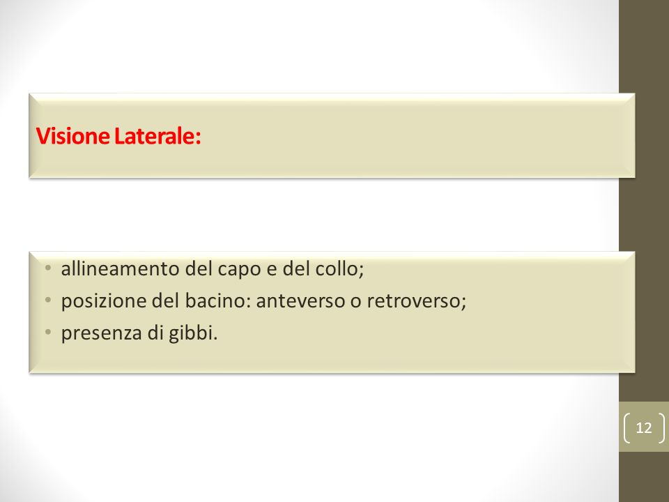 Visione Laterale: allineamento del capo e del collo;