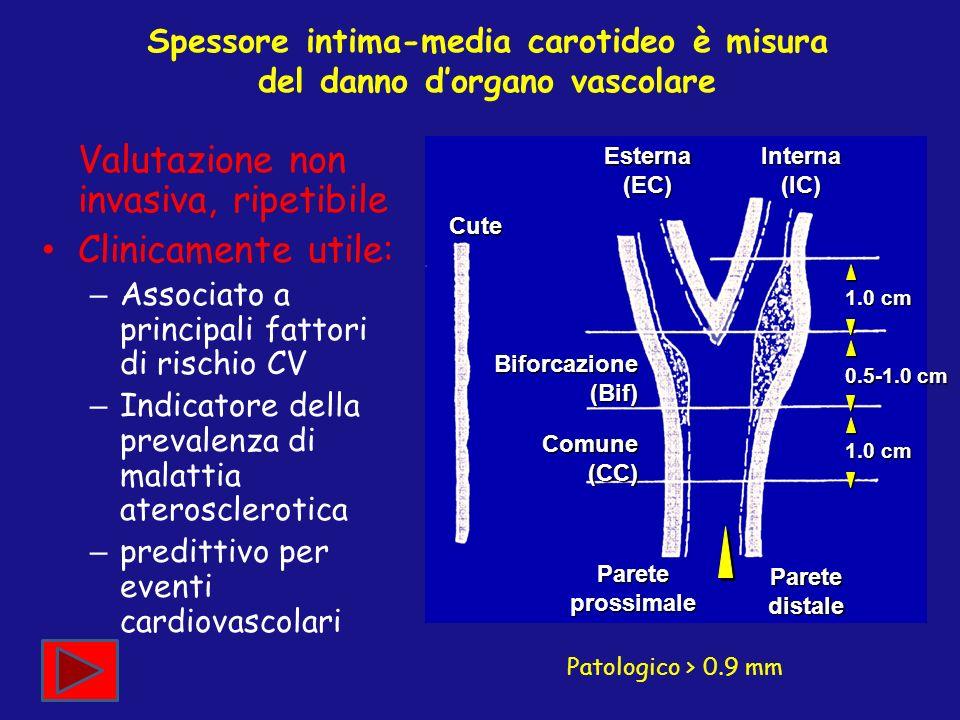 Spessore intima-media carotideo è misura del danno d'organo vascolare