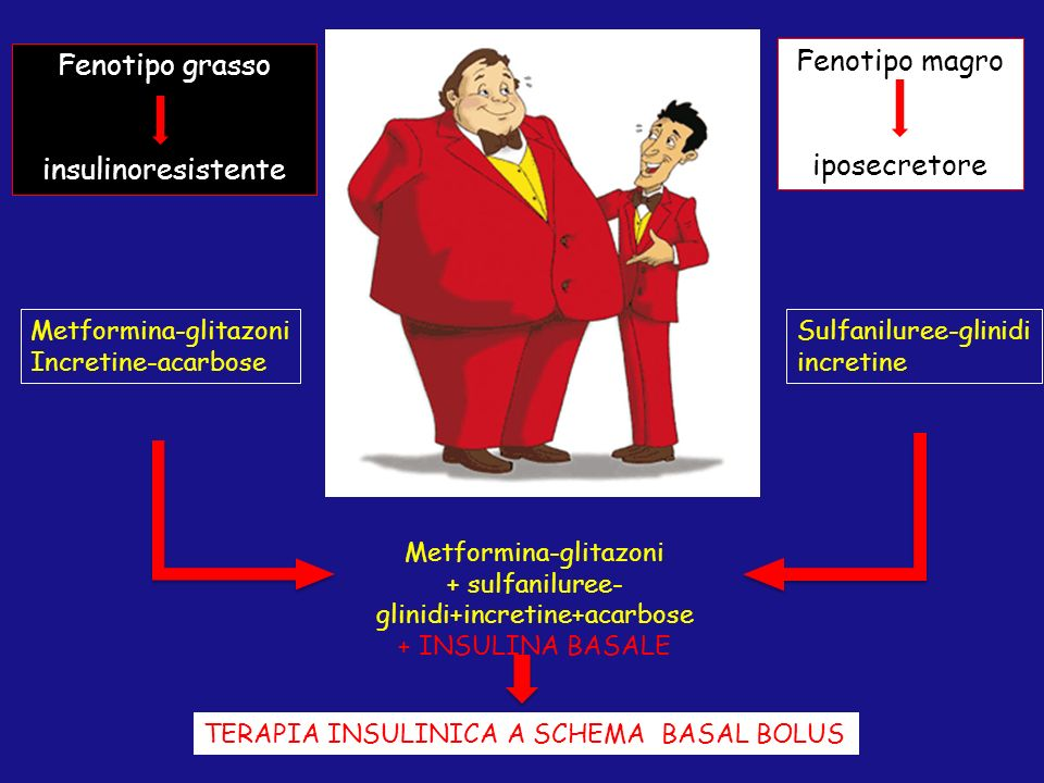 Fenotipo magro Fenotipo grasso iposecretore insulinoresistente