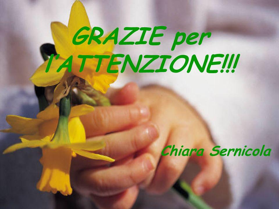 GRAZIE per l'ATTENZIONE!!! Chiara Sernicola