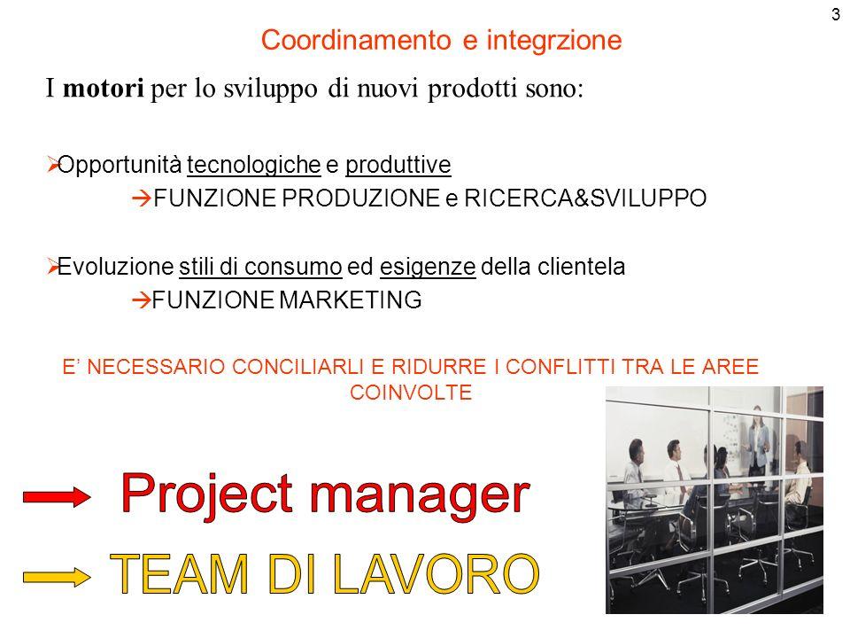 Project manager TEAM DI LAVORO Coordinamento e integrzione
