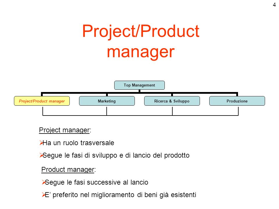 Project/Product manager Project manager: Ha un ruolo trasversale