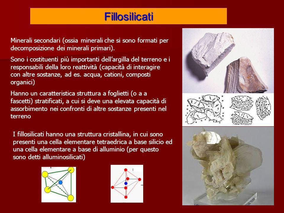 Fillosilicati Minerali secondari (ossia minerali che si sono formati per decomposizione dei minerali primari).