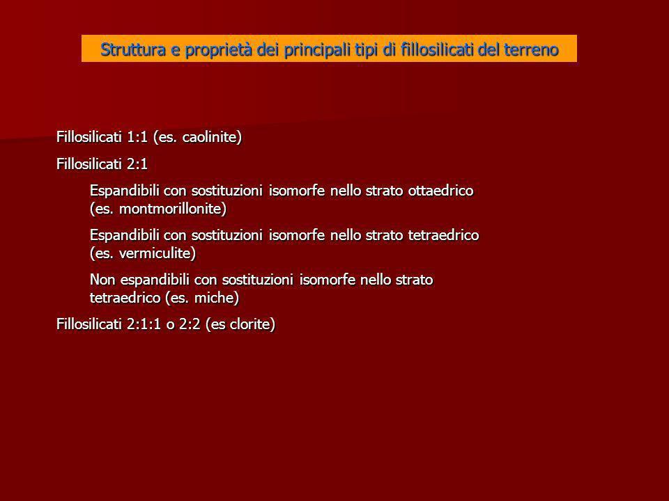 Struttura e proprietà dei principali tipi di fillosilicati del terreno