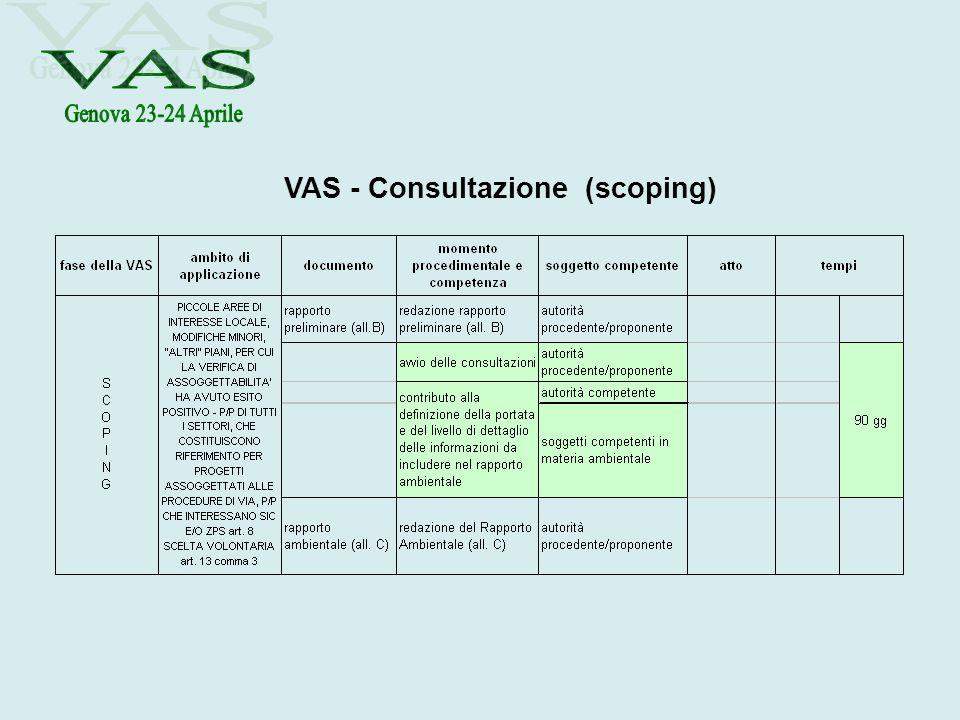 VAS - Consultazione (scoping)