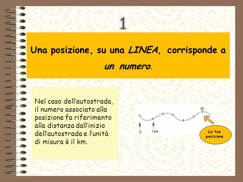 Una posizione, su una LINEA, corrisponde a un numero.