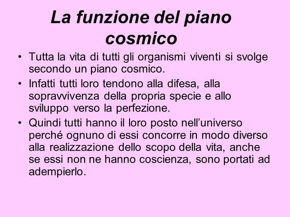 La funzione del piano cosmico
