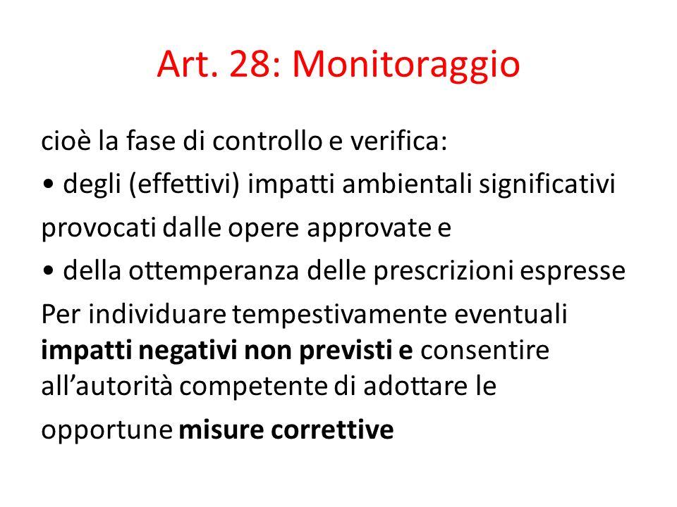 Art. 28: Monitoraggio