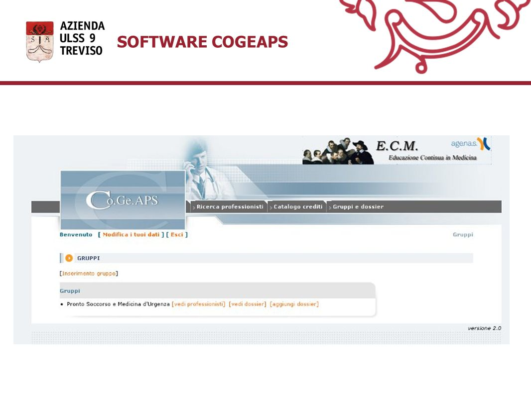 SOFTWARE COGEAPS 17