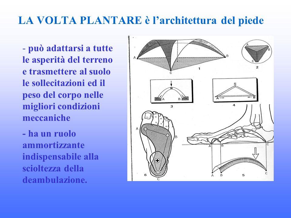 LA VOLTA PLANTARE è l'architettura del piede