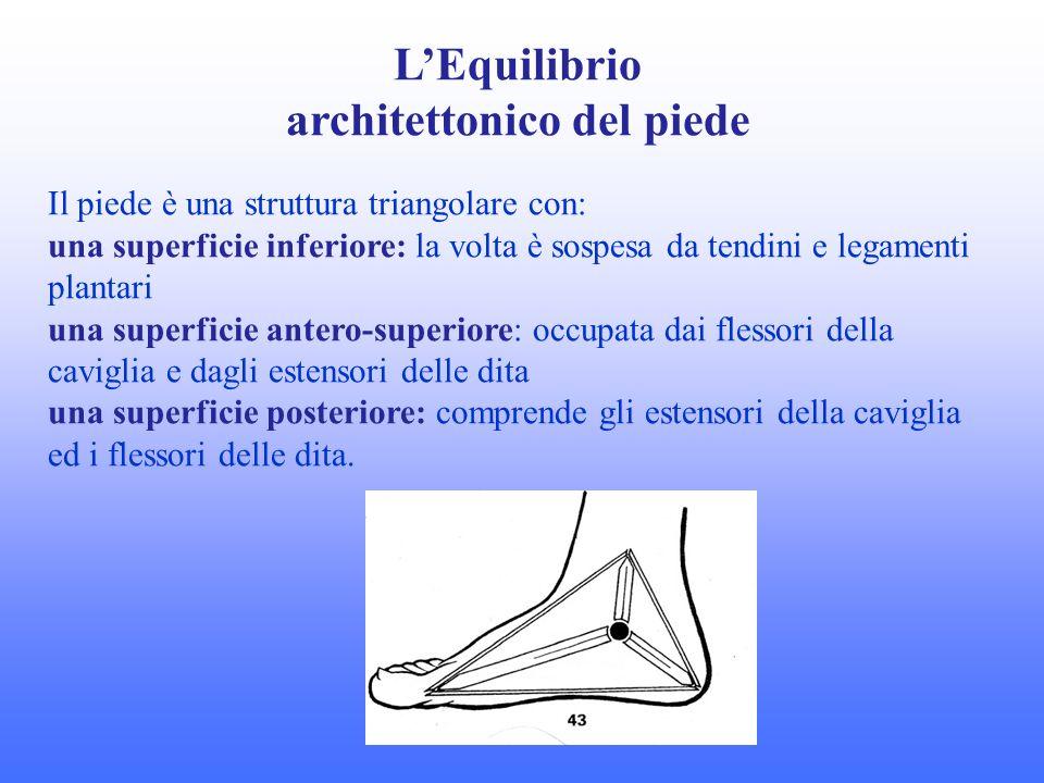 architettonico del piede
