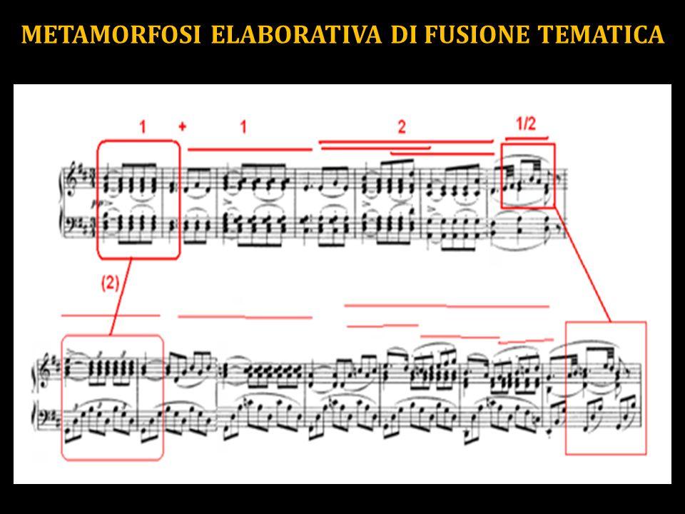 METAMORFOSI ELABORATIVA DI FUSIONE TEMATICA