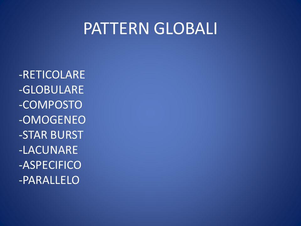 PATTERN GLOBALI -RETICOLARE -GLOBULARE -COMPOSTO -OMOGENEO -STAR BURST -LACUNARE -ASPECIFICO -PARALLELO