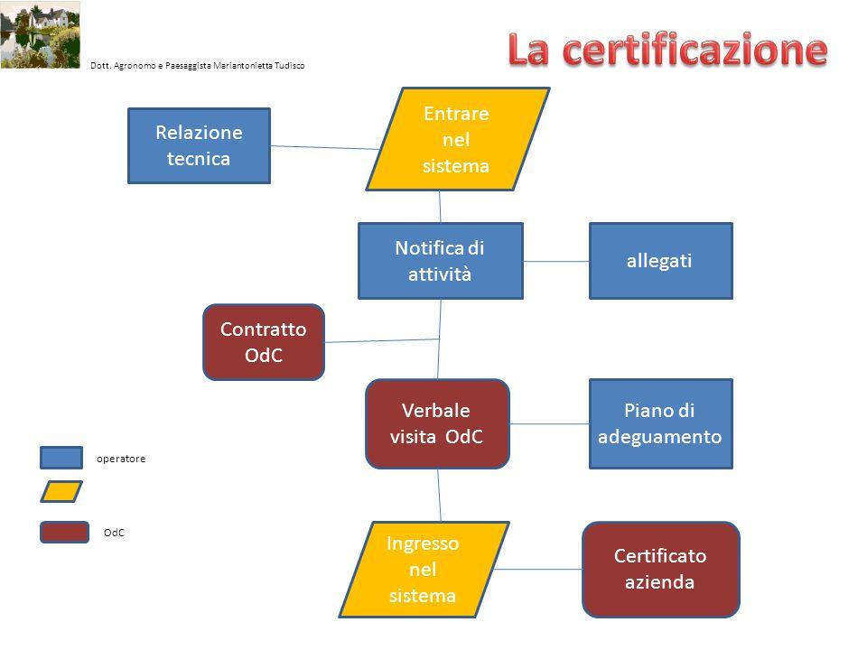 La certificazione Entrare nel sistema Relazione tecnica
