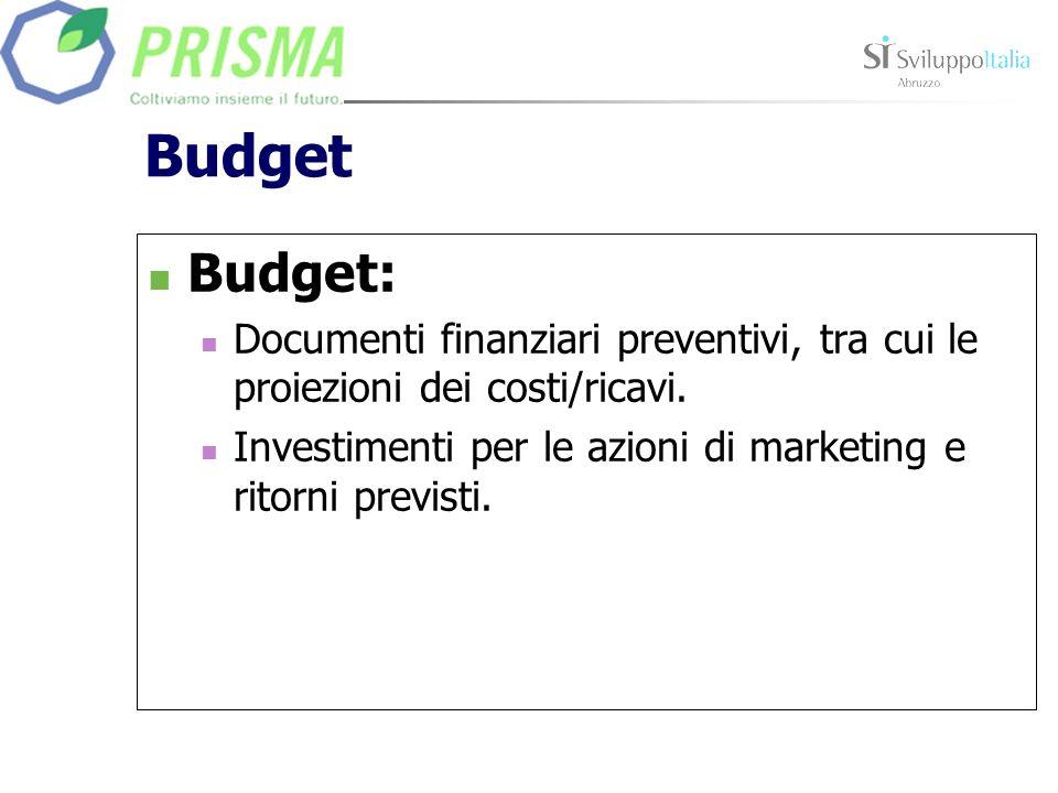 Budget Budget: Documenti finanziari preventivi, tra cui le proiezioni dei costi/ricavi.