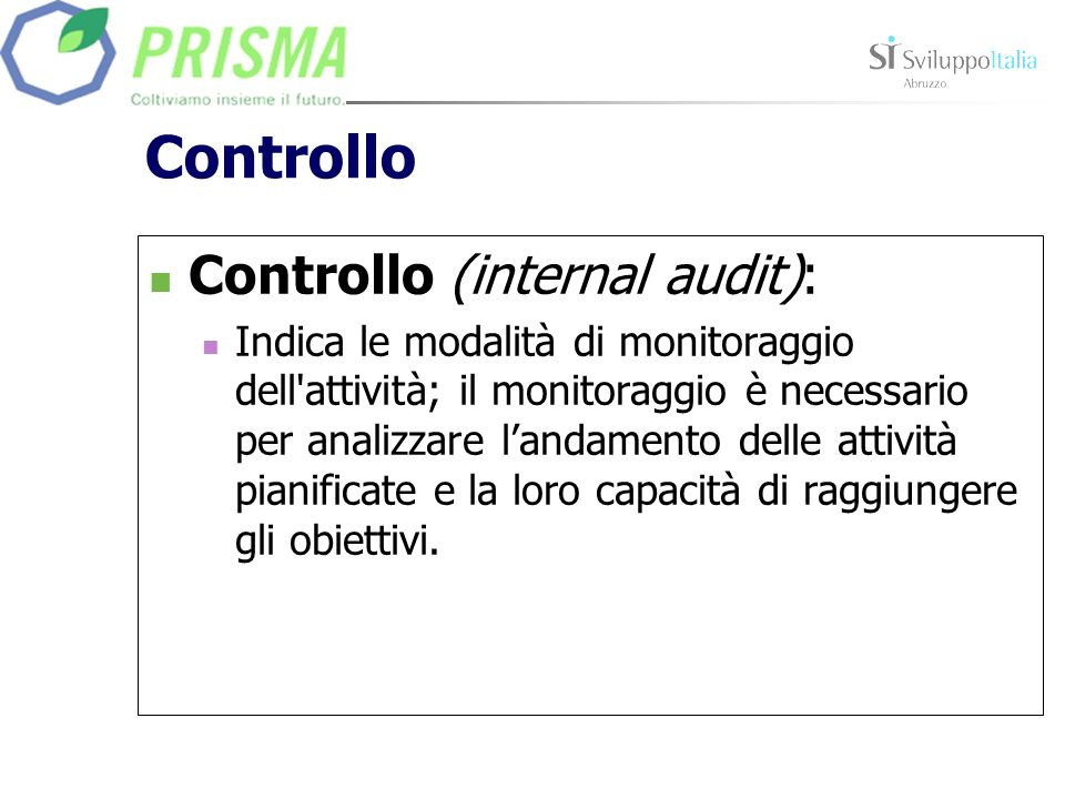 Controllo Controllo (internal audit):