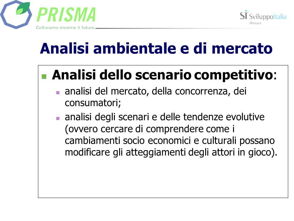 Analisi ambientale e di mercato