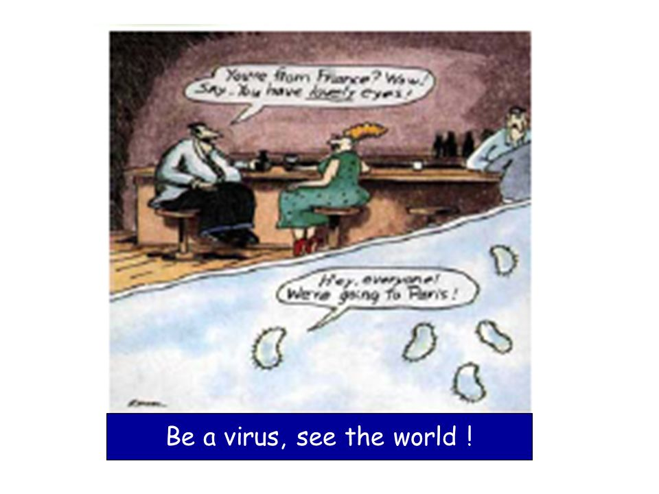 Be a virus, see the world !
