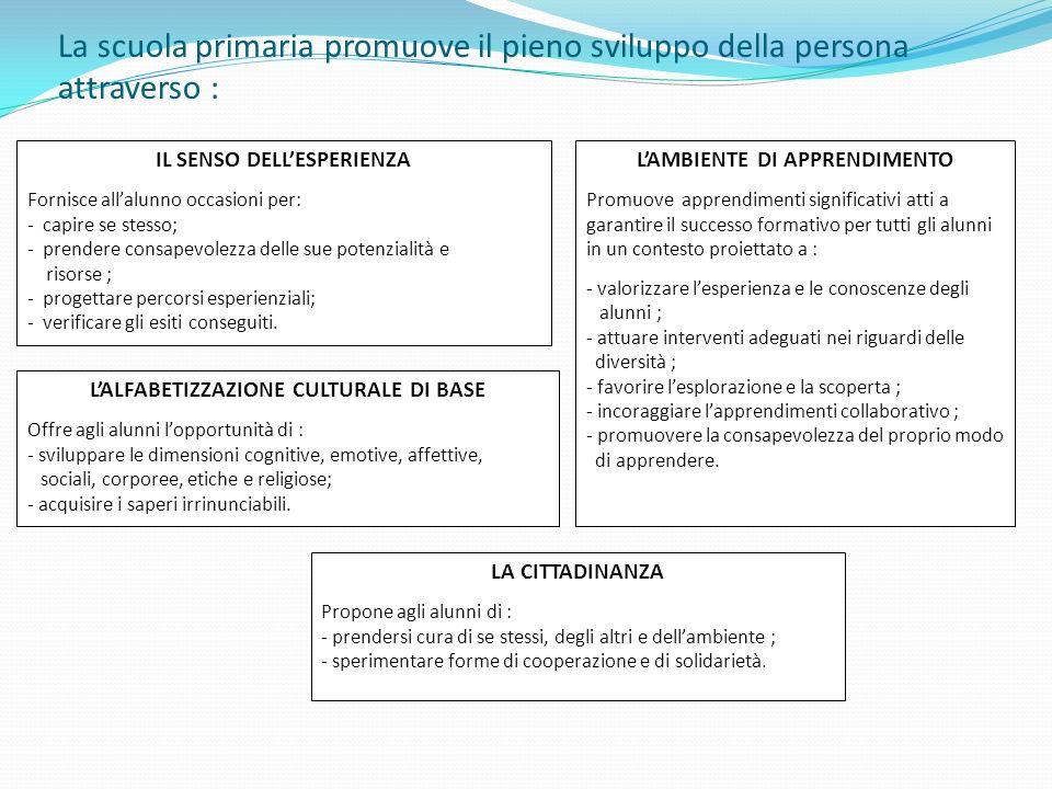 IL SENSO DELL'ESPERIENZA L'ALFABETIZZAZIONE CULTURALE DI BASE