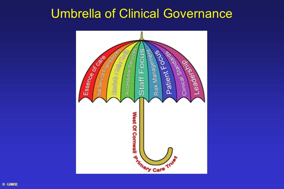 Umbrella of Clinical Governance