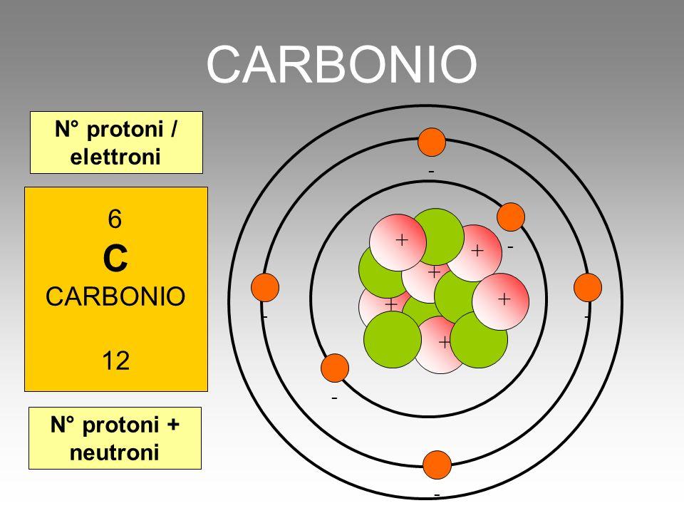 CARBONIO C 6 CARBONIO 12 N° protoni / elettroni + + + + + +