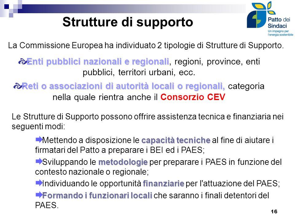 Strutture di supporto La Commissione Europea ha individuato 2 tipologie di Strutture di Supporto.
