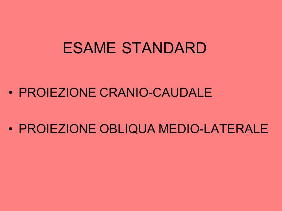 ESAME STANDARD PROIEZIONE CRANIO-CAUDALE