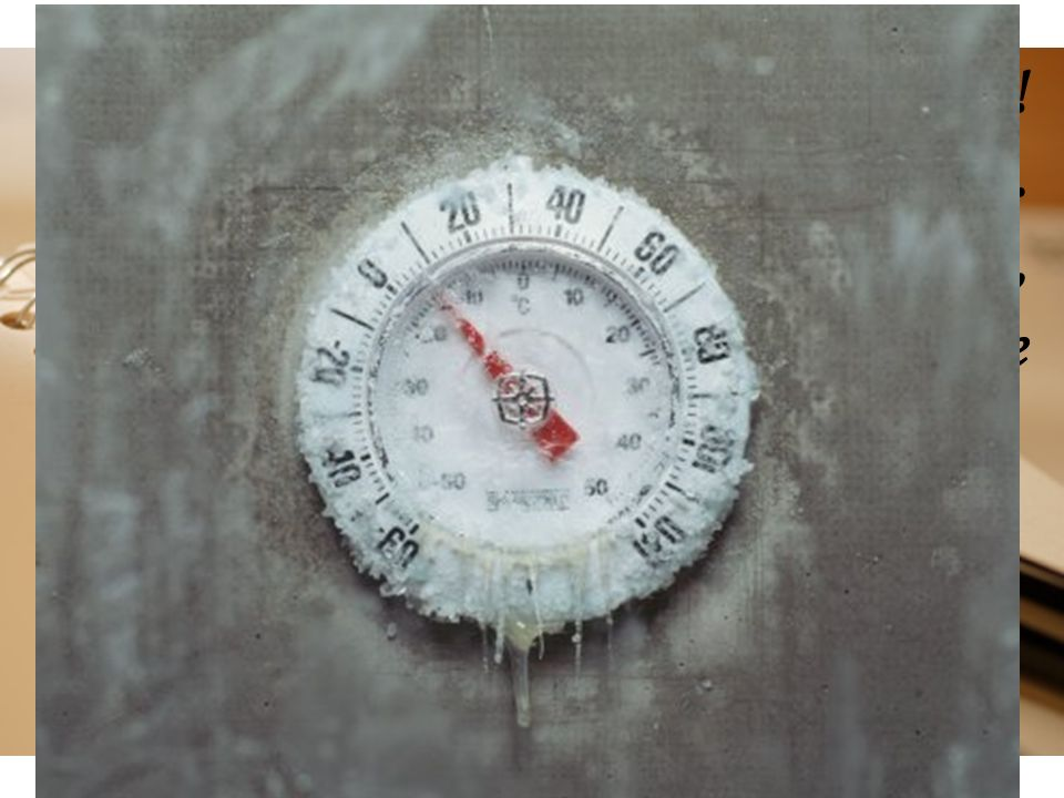 Fa troppo freddo. Ho il corpo tutto intorpidito
