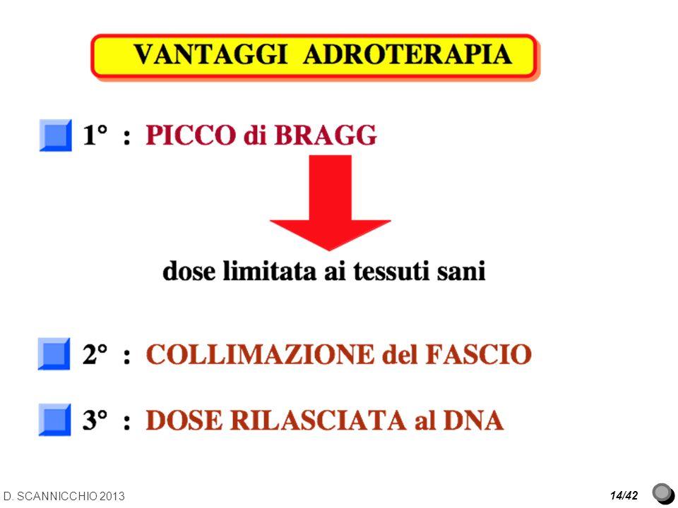 D. SCANNICCHIO 2013 14/42