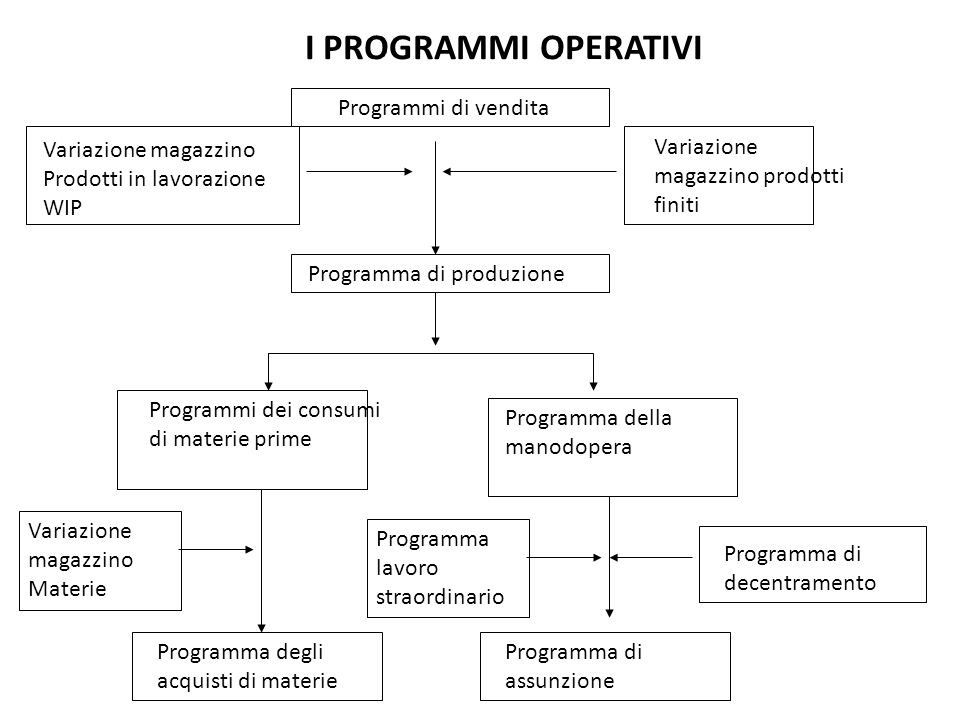 I PROGRAMMI OPERATIVI Programmi di vendita Variazione magazzino