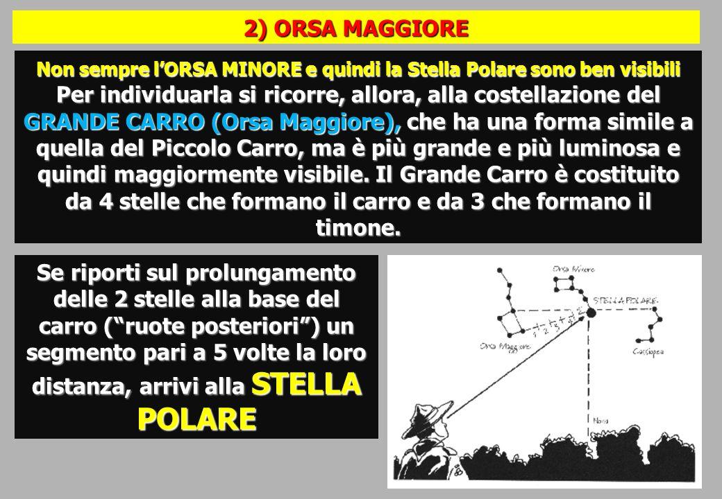 2) ORSA MAGGIORE