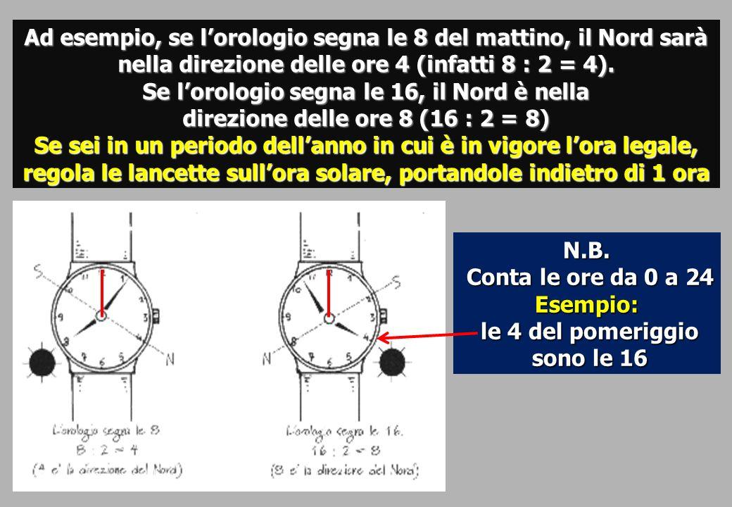 Ad esempio, se l'orologio segna le 8 del mattino, il Nord sarà nella direzione delle ore 4 (infatti 8 : 2 = 4). Se l'orologio segna le 16, il Nord è nella
