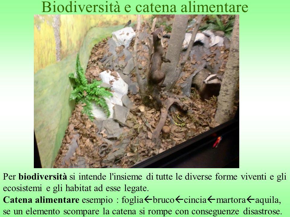 Biodiversità e catena alimentare