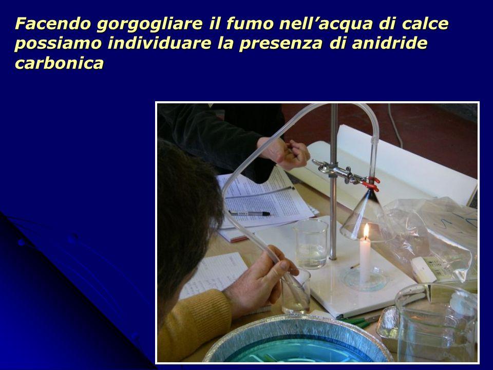 Facendo gorgogliare il fumo nell'acqua di calce possiamo individuare la presenza di anidride carbonica