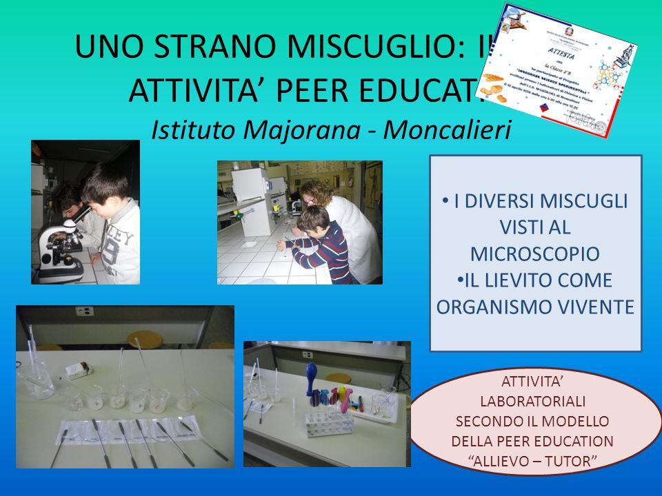 UNO STRANO MISCUGLIO: IL PANE ATTIVITA' PEER EDUCATION Istituto Majorana - Moncalieri