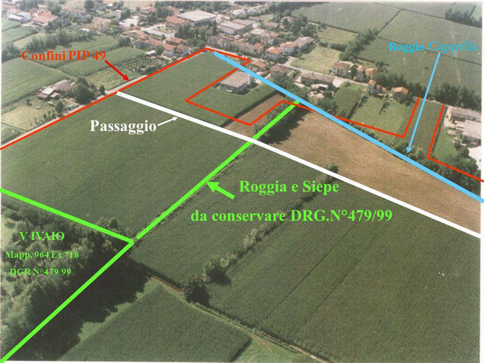 Passaggio Roggia e Siepe da conservare DRG.N°479/99 Confini PIP 49
