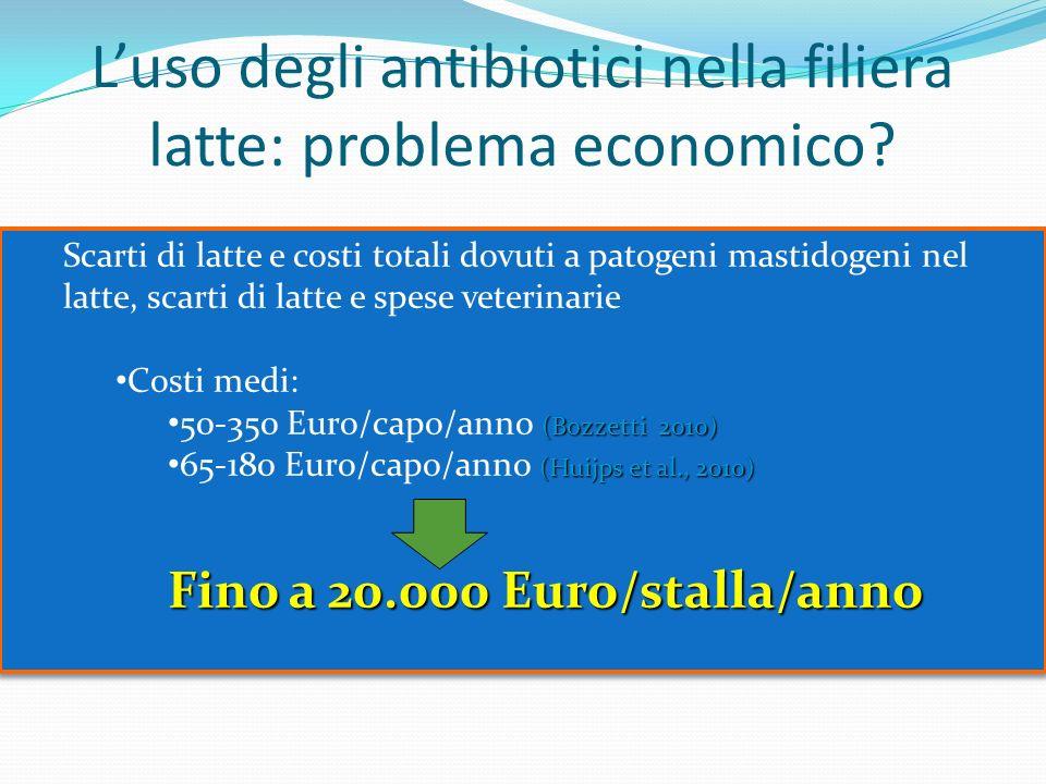 L'uso degli antibiotici nella filiera latte: problema economico
