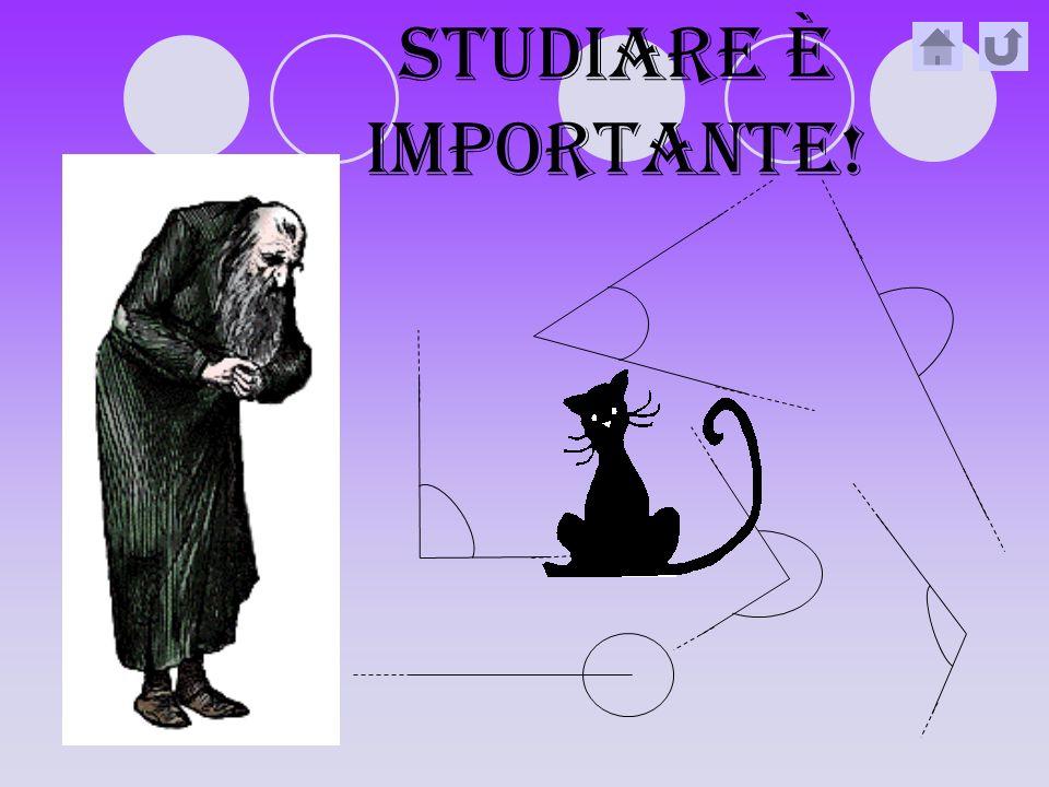 STUDIARE è IMPORTANTE!