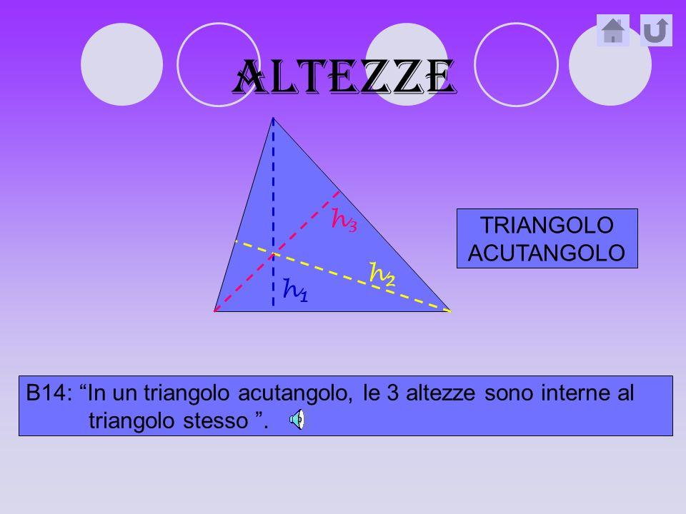 altezze h3 TRIANGOLO ACUTANGOLO h2 h1