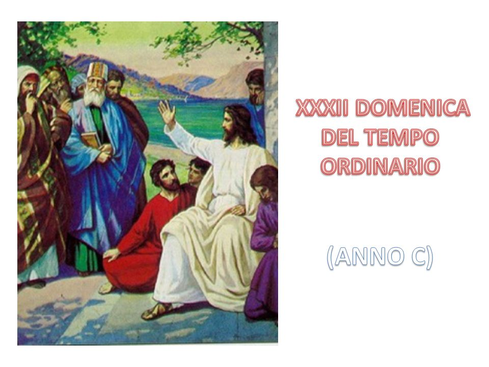 XXXII DOMENICA DEL TEMPO ORDINARIO (ANNO C)