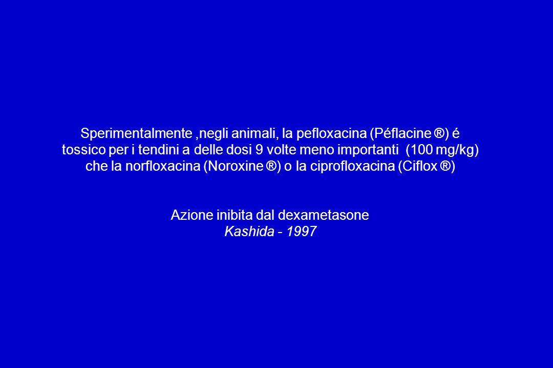 Sperimentalmente ,negli animali, la pefloxacina (Péflacine ®) é tossico per i tendini a delle dosi 9 volte meno importanti (100 mg/kg) che la norfloxacina (Noroxine ®) o la ciprofloxacina (Ciflox ®) Azione inibita dal dexametasone Kashida - 1997