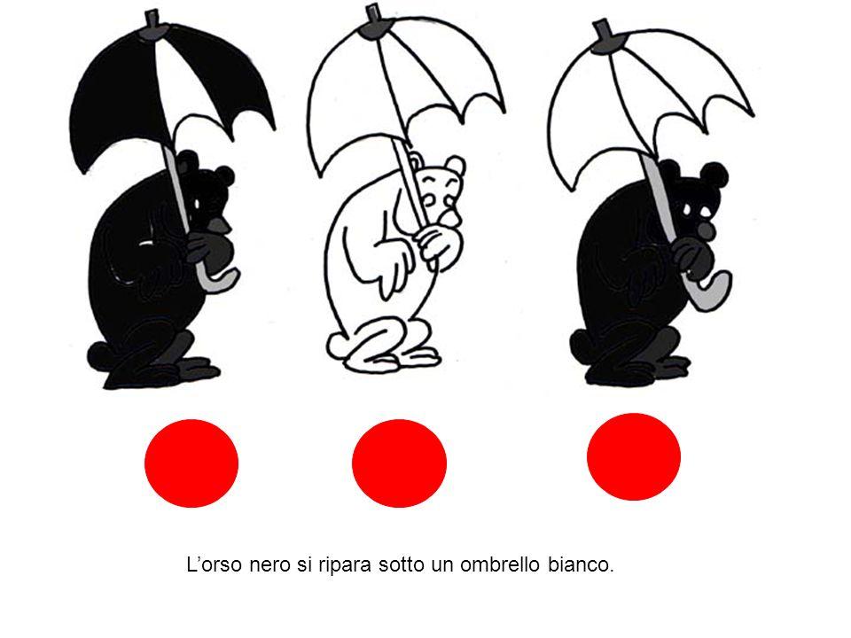 L'orso nero si ripara sotto un ombrello bianco.