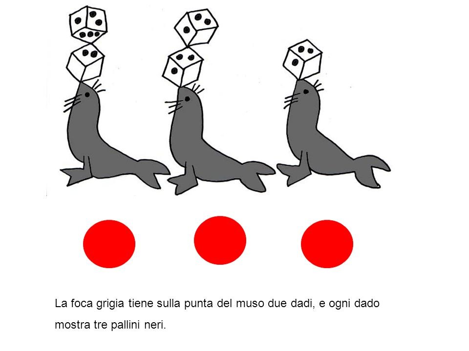 La foca grigia tiene sulla punta del muso due dadi, e ogni dado