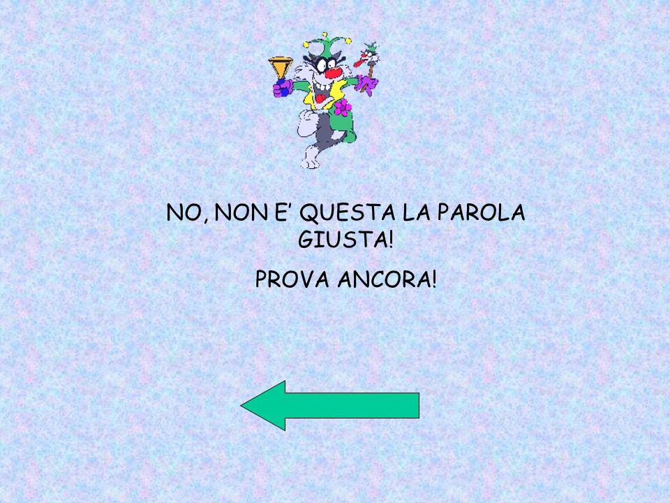 NO, NON E' QUESTA LA PAROLA GIUSTA!